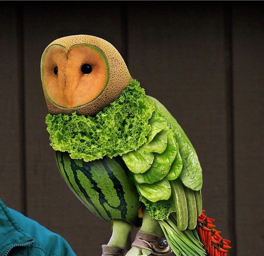 Voćne skulpture - Page 3 Fruit-owl-used-restaurant-equipment
