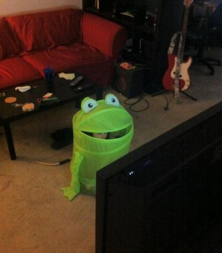 frog laundry basket