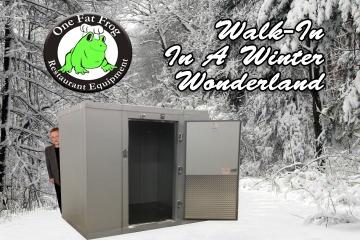 Winter_Walkin