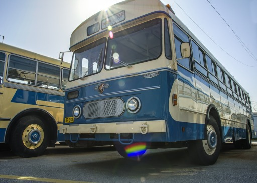 bus-381019_1920
